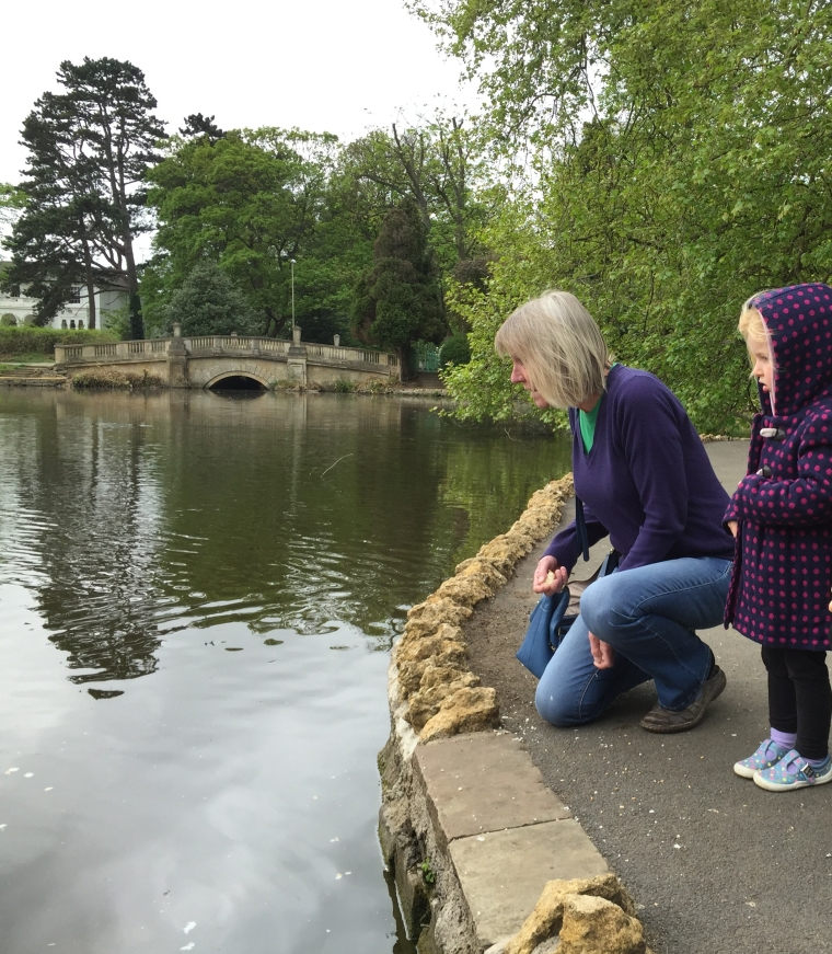 feeding ducks pittville park cheltenham free family days out