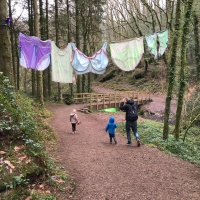 My very honest Bluestone review – 3 night Christmas break in Wales