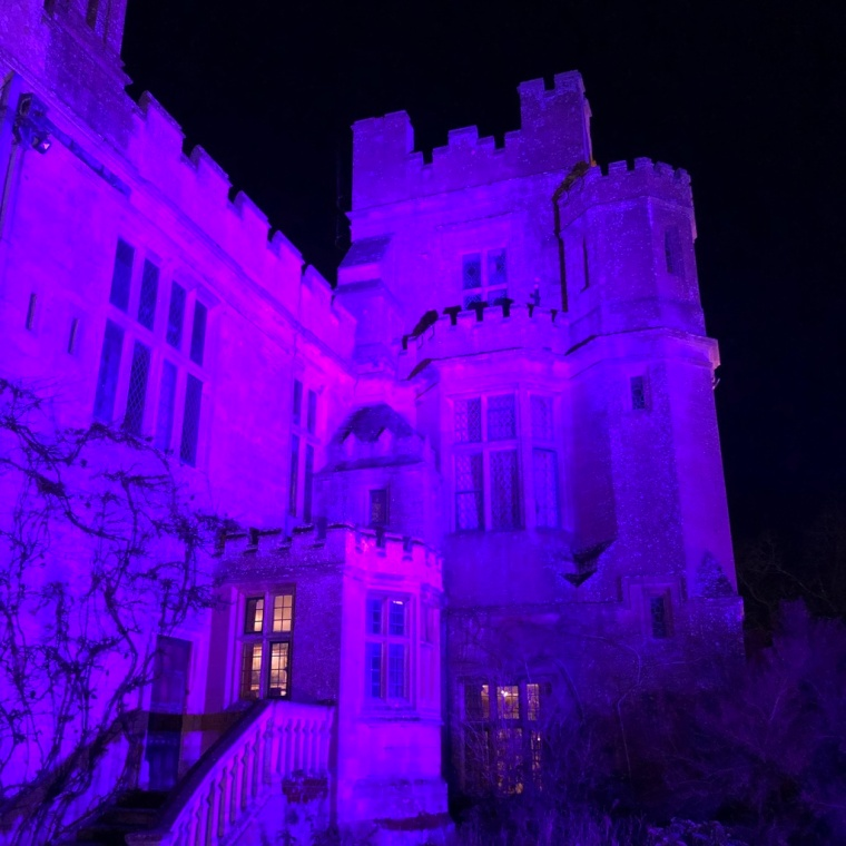 Sudeley Castle Spectacle of Light review and photos 2018 (9).jpg