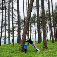 Exploring May Hill with kids in the Forest of Dean, Gloucestershire