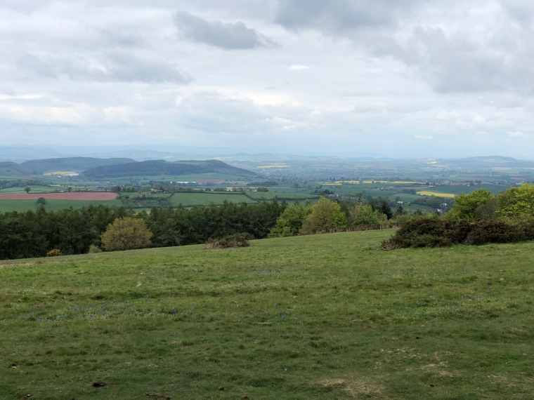 Exploring May Hill with kids in the Forest of Dean Gloucestershire