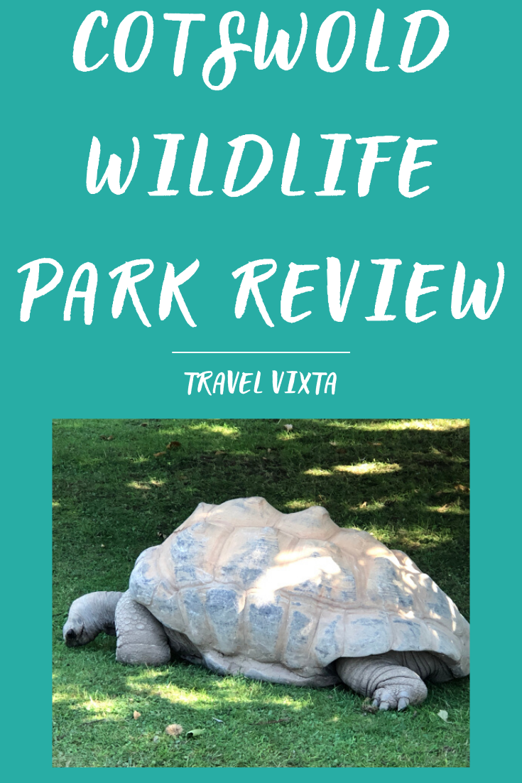 Cotswold Wildlife Park review - giant tortoise