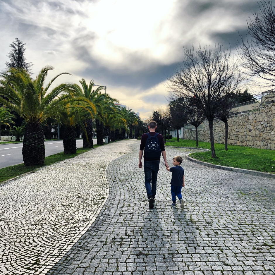 Palm tree lined street - Castelo Branco, Portugal, things to do with kids