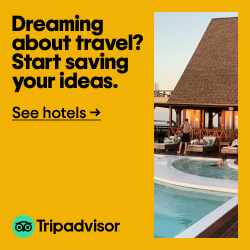 trip advisor travel dreams