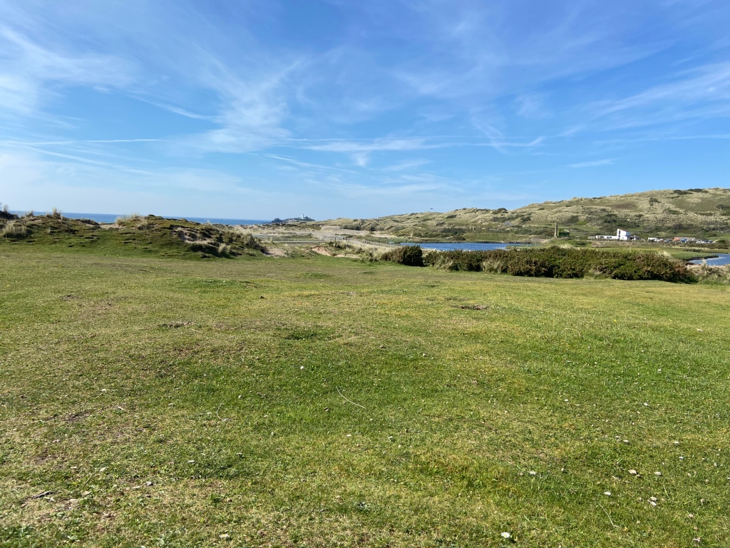 nature reserve at The Towans beach in Cornwall