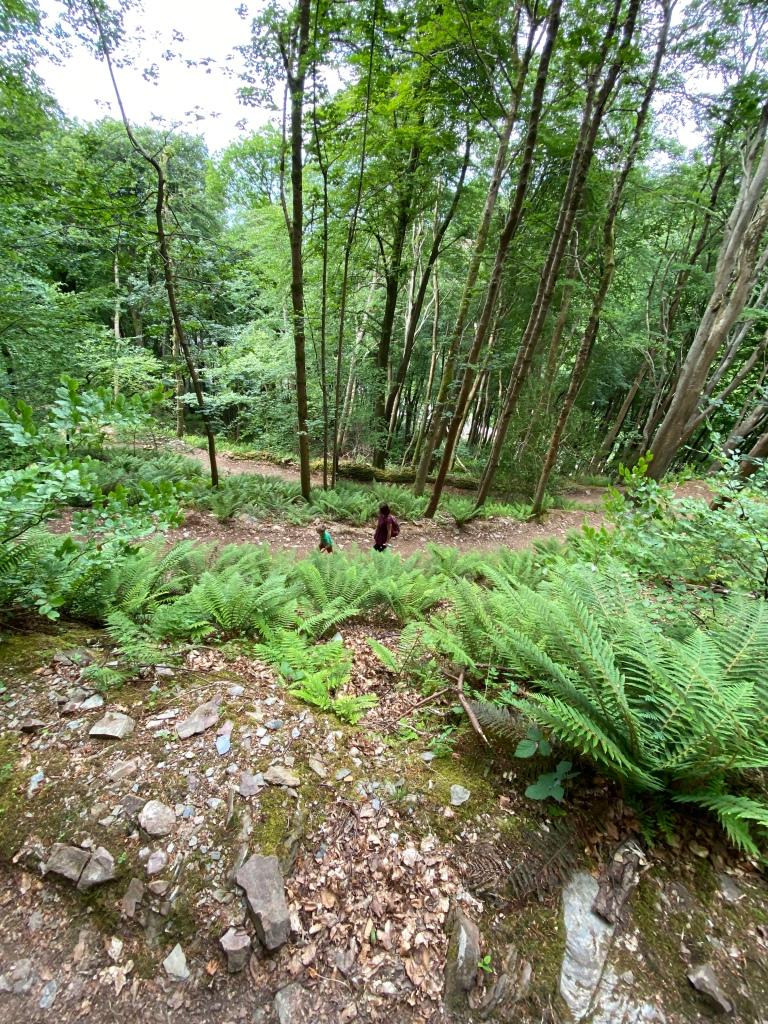 Lynmouth Lynton Exmoor National Park Devon